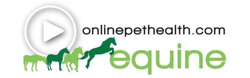Onlinepethealth Equine Logo