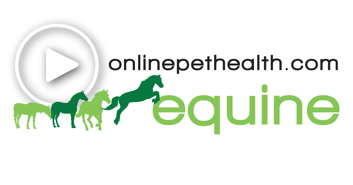 Onlinepethealth Equine Logo Feature Image