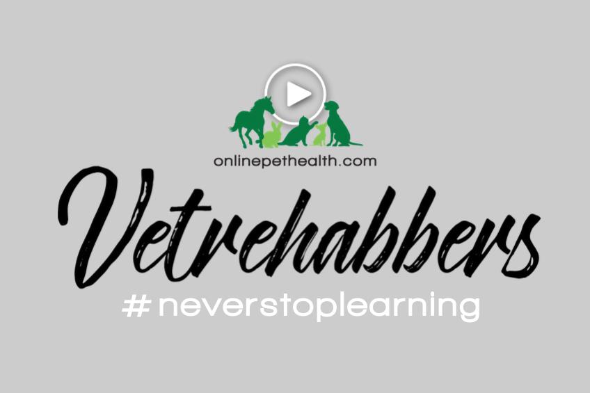 Vetrehabbers never stop learning