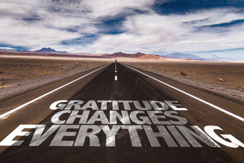 From a Grateful Vetrehabber