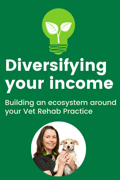 Diversifying Income
