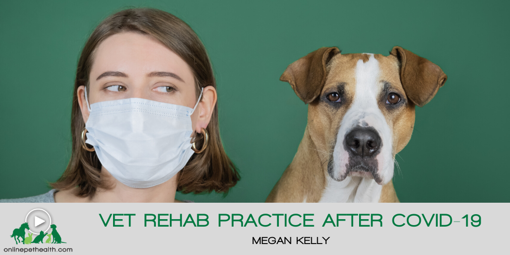 Vet Rehab Practice after COVID-19