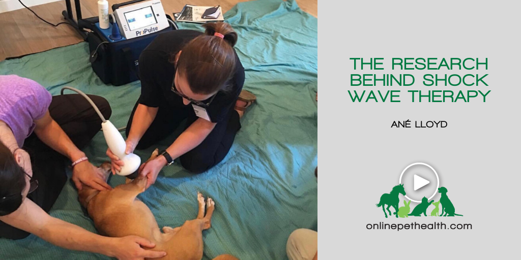 The Research Behind Shock Wave Therapy