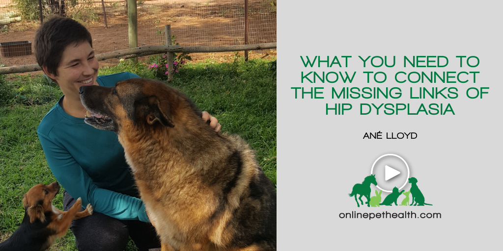 What you Need to Know to Connect the Missing Links of Hip Dysplasia