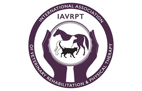 IAVRPT Logo