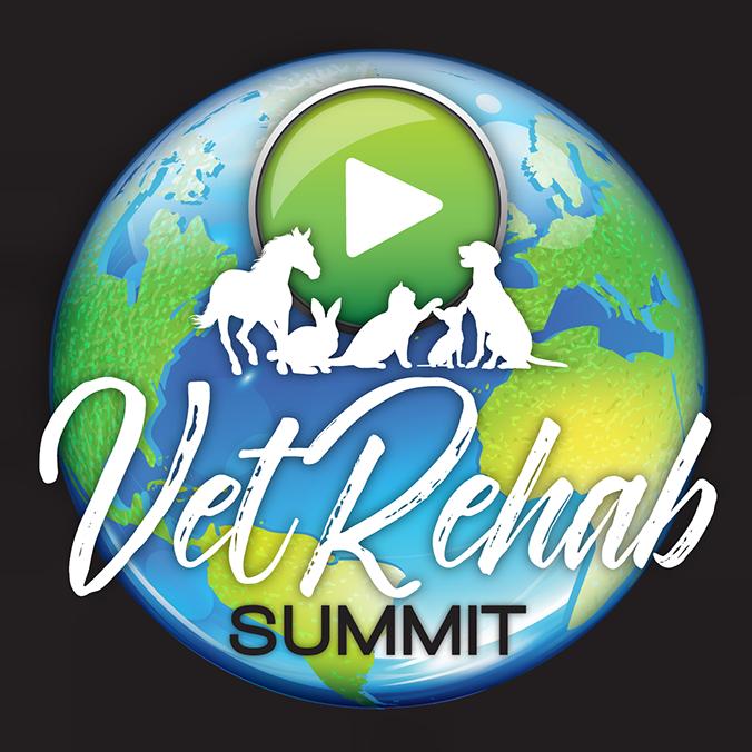 Vet Rehab Summit Logo