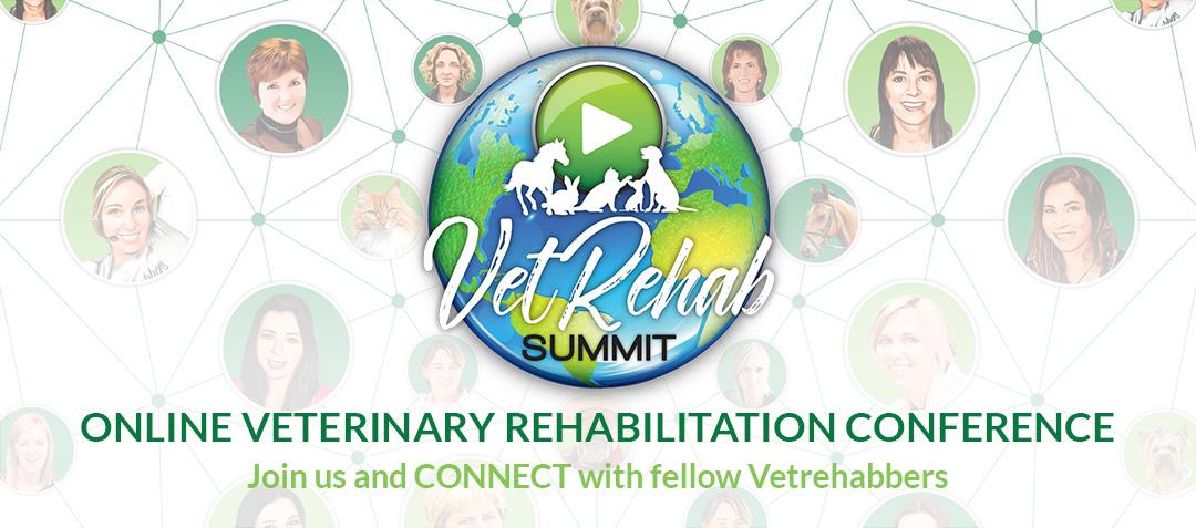 Vet Rehab Summit 2020
