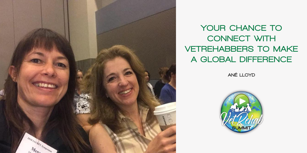 Your Chance to Connect with Vetrehabbers to Make a Global Difference