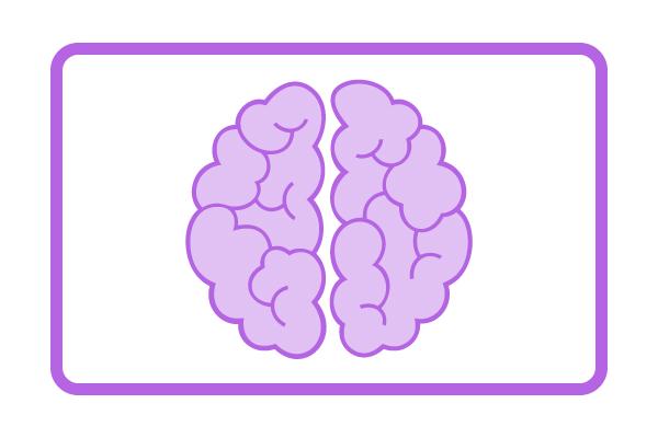 Equine Neurological Rehabilitation